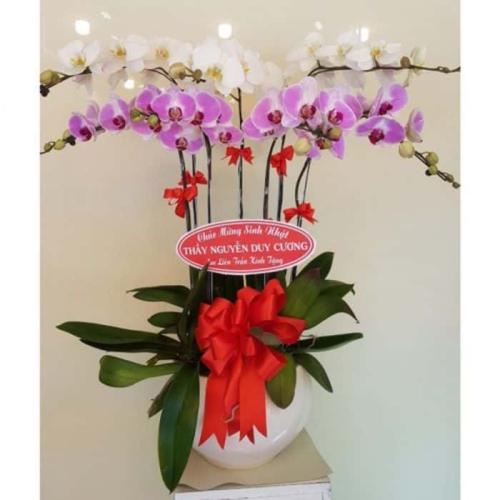 hoa sinh nhật sang trọng, sang chảnh